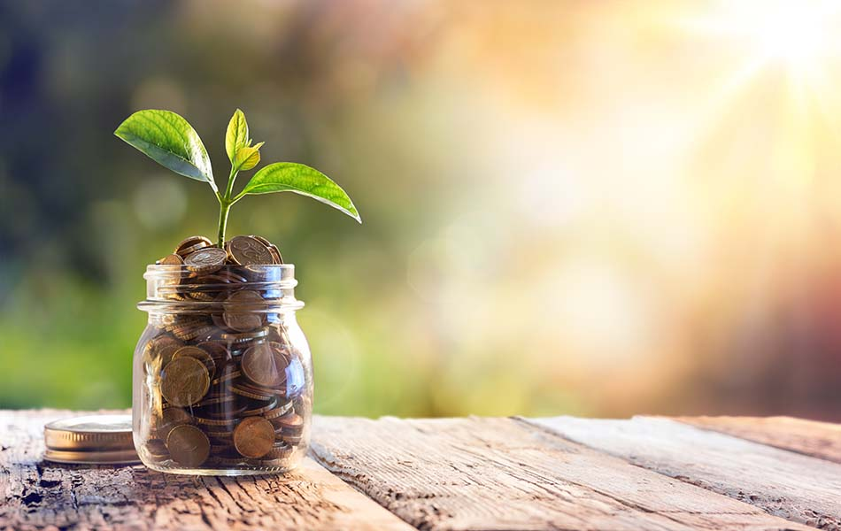 Vad är en kapitalförsäkring och hur ska den redovisas?